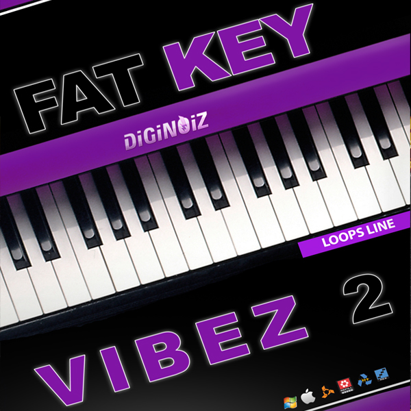 Diginoiz Fat Key Vibez vol.2 MULTIFORMAT-DYNAMICS